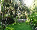 Adus Beach Inn - Garden