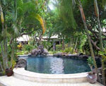 Hidden Paradise - Pool & Garden